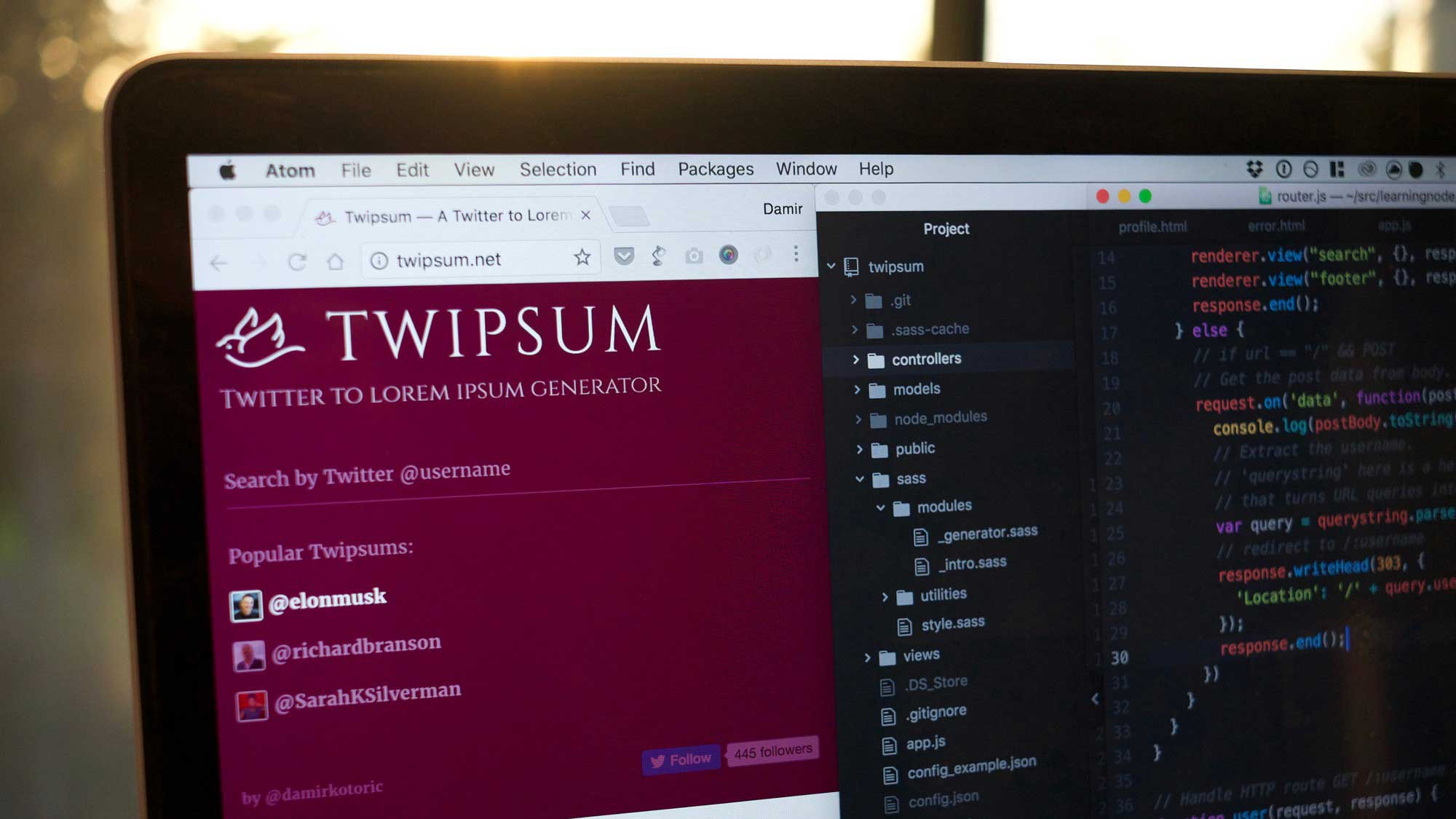 Photo showing Twipsum, a web app I built, and the source code that runs it.